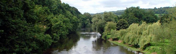 Moon River Cruises Ireland, Cruises, information about Moon River Cruises, Moon River Cruises offers. Cruises in Ireland